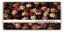 __LEONARD__ LOGO [2013]